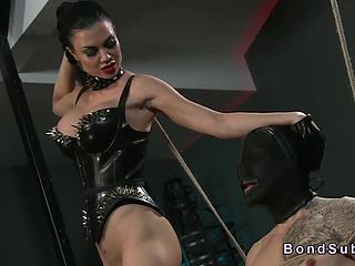 Mistress Blowjob - Free Tied Up Slave Gets Blowjob Until Cums From Mistress Porn Video -  Slutload ™ Mobile